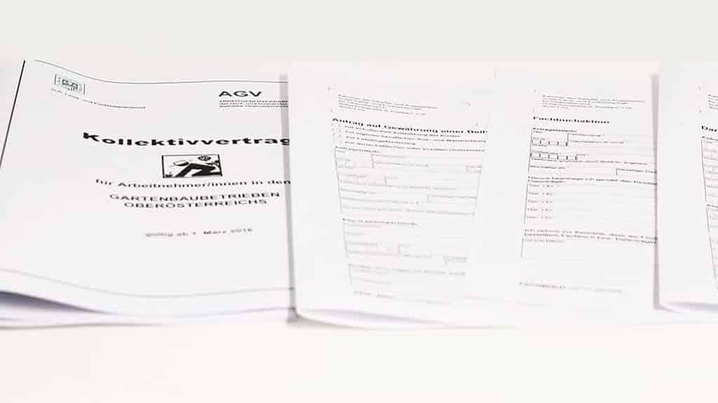 NEU: KV und Protokoll Schlachtkörperklassifizierung