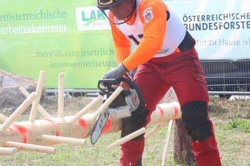 Bundesentscheid Forst 2019